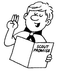 Image result for scout