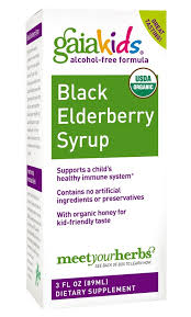 Gaia <b>Kids Black Elderberry</b> Alcohol-Free <b>Syrup</b>, 3 Fl Oz - Walmart ...
