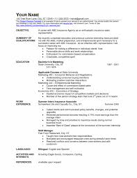 s floor resume retail s associate job description for resume floor associate brefash retail s associate job description for