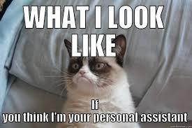 Personal Assistant - quickmeme via Relatably.com