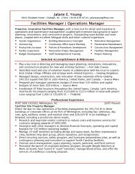director cv it manager resume sample it manager resume format a sample of a resume vp finance resume examples graduate student it manager resume template it