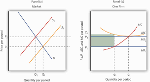 Effectiveness of market monitoring  A case study on Kitchen markets o    Economics Discussion