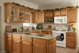 kitchen stylish types of kitchens on different types of wood cabinets pt cabinets different types of awesome types cabinet
