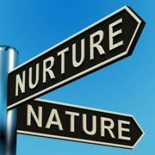 nature vs nurture ao ao ao   psychology wizardevaluating the approaches for nature nurture  ao   assessing the assumptions