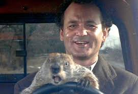 Groundhog Day 2015: The Memes You Need to See | Heavy.com