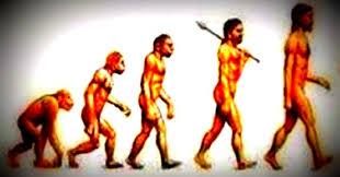 Es azarosa la evolución