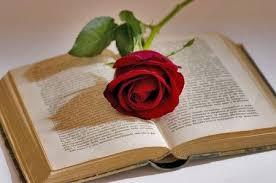 un libro e una rosa