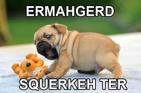 Pug Meme Puppy Squeaky Toy | Humor Hound via Relatably.com