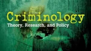 essay on the importance of criminology words