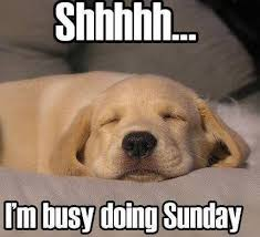 Shh I'm busy doing Sunday quotes quote days of the week sunday ... via Relatably.com