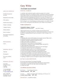 accounting cv resume examples for accounting