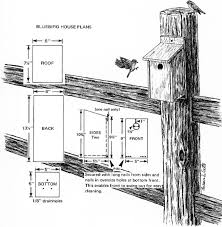images about Birdhouses on Pinterest   Bird house plans       images about Birdhouses on Pinterest   Bird house plans  Bluebird house and Bird houses
