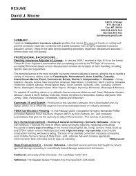 general insurance resume sample   best resume guidelinesgeneral insurance resume sample insurance underwriter resume sample three resume sample resume writing company omaha stern