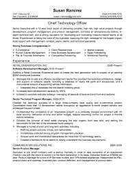 resume examples  an example of a resume resume examples for        resume examples  an example of a resume for chief technology officer with strong business competencies