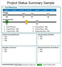 Executive Report Template Word  project management status report