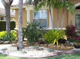 desert landscape plants california backyard landscaping ideas rocks