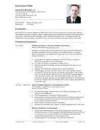 curriculum vitae cv examples and writing tips com dot net developer net developer sample resume cv curriculum vitae format