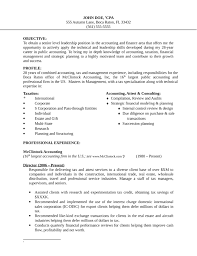basic finance manager resume templatebasic finance manager resume