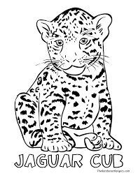 Small Picture Coloring Pages Animals Jungle Coloring Pages