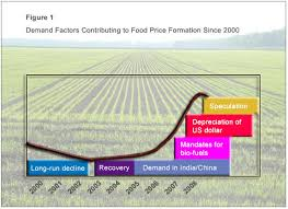 the threat of global food shortages     one   on line opinion    timmer global food shortages figure