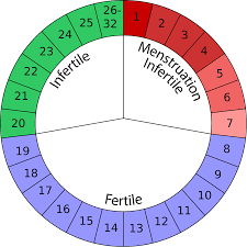 Image result for menstrual timing