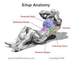 「sit up exercises」の画像検索結果
