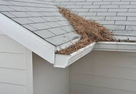 Remove Pine Needles From Roofs