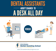 colorado dental assisting school condensed affordable coursework dental assisting schools in colorado