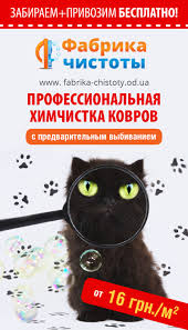 flyers for carpet cleaning service anna malykhina web designer flyers for carpet cleaning service