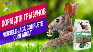 <b>Корм для грызунов Versele-Laga</b> Complete CUNI ADULT | Обзор ...