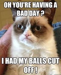 Oh You're Having A Bad Day? Cat Meme - Cat Planet | Cat Planet via Relatably.com