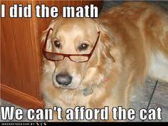 Funny animal quotes on Pinterest | Dogs, Funny Golden Retrievers ... via Relatably.com