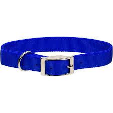 Coastal Pet Metal Buckle Double Ply <b>Nylon Personalized Dog Collar</b> ...