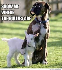 Show Me Where The Bullies Are | WeKnowMemes via Relatably.com