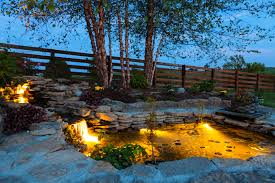 Image result for pics of light shining from a pond