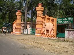 Image result for Picture of bhawal national park,Bangladesh