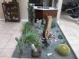 Small Picture Indoor Cactus Atrium Mediterranean Garden Houston by