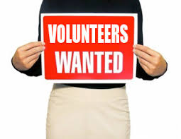 Image result for fair volunteers