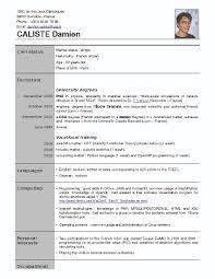 template cv en francais create professional resumes online for template cv en francais mechanic cv template dayjob french cv template word