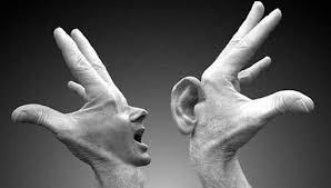 É possível a determinação do comportamento não-verbal pelo comportamento verbal? 13