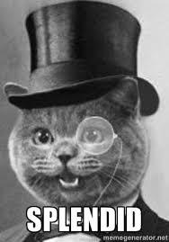 SPLENDID - Monocle Cat | Meme Generator via Relatably.com
