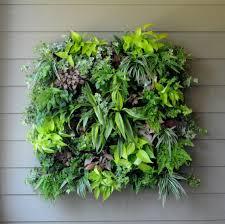 living wall planters planter xl living wall planter pamela crawford wall side planter living walls