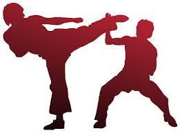 Image result for karate medals