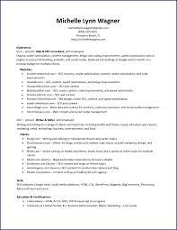 resume web seo consultant seo resume mwagner