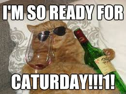i'm so ready for caturday!!!1! - Party Cat - quickmeme via Relatably.com