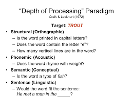 levels of processing psychology essay format   essay for you  levels of processing psychology essay format   image