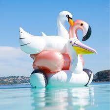 60 Inch 1.5M <b>Giant Inflatable</b> Swan Flamingo <b>Toucan</b> Pool Float ...