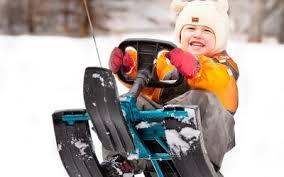 <b>Санки</b> и снегокаты оптом купить от компании РЦ Восток - низкие ...