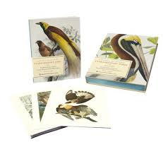 natural histories extraordinary birds  essays  amp  plates of rare    natural histories extraordinary birds  essays  amp  plates of rare book selections from the american museum of natural history library  with  ready to f