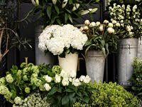 400+ <b>Vintage Flower</b> Shop images in 2020 | flower shop, florist shop ...